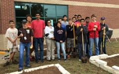 Volunteers to Help Garden Plants in Courtyard