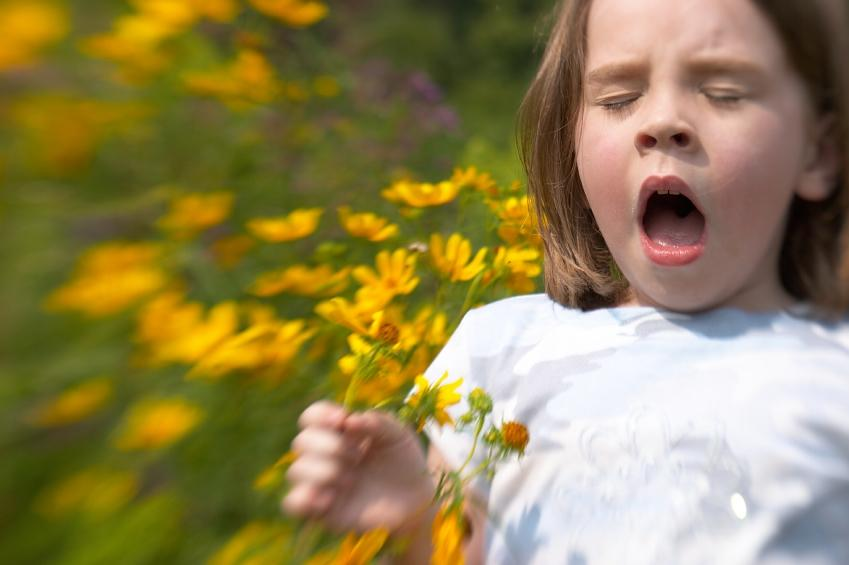 Allergies affect Austinites of all ages.