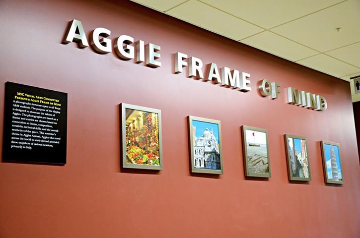 Texas A&M brings inspiration for McNeil Staffers. A Frame of Mind is this years winner of the multi-media project.