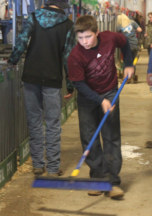 At the Travis County Youth Show, Ivan Kaderka sweeps the walkway between pens.   Besides showing an animal, each student does their part to decorate and clean the pen area. Keeping their pens clean is not only for  the animals. Schools with the cleanest pen area can win the Herdsman Award which can help fund future FFA events.