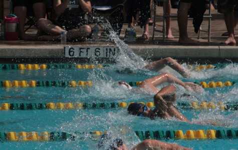 Swimmers Advance to State Competition